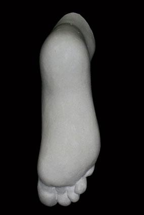 A092 Piede femminile