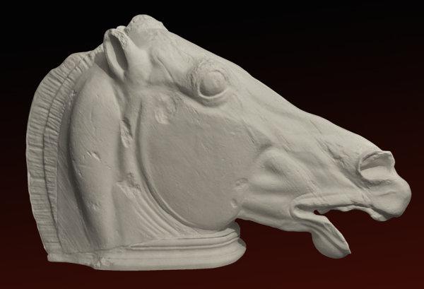 B025 Testa  Cavallo di Fidia