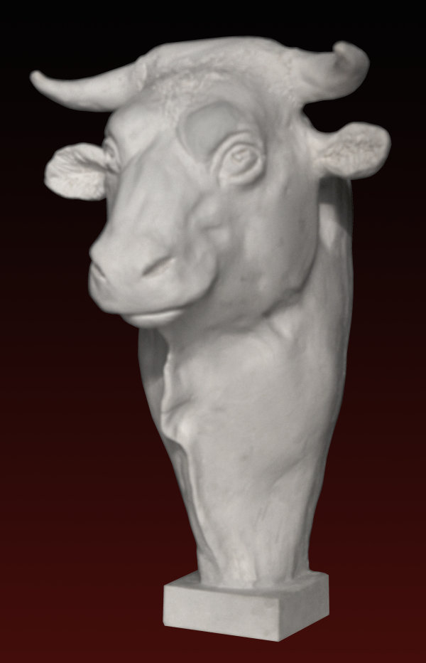 B252  Toro