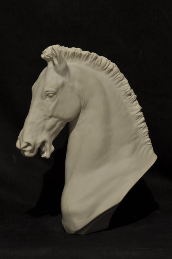 B045  Testa di cavallino 1900