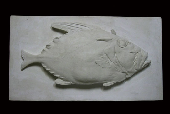 R106 Pesce