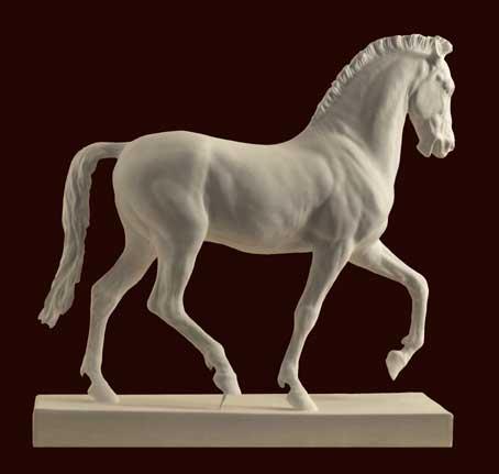 S024 Cavallo Monti
