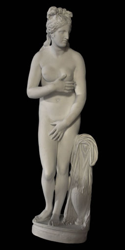 S133 Venere Capitolina