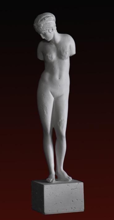 S237 Afrodite