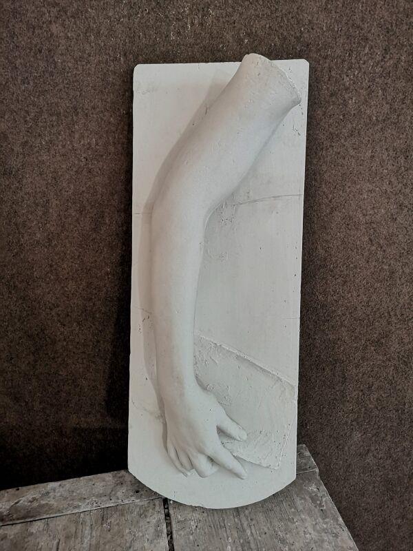 A106 Braccio femminile dal Vero