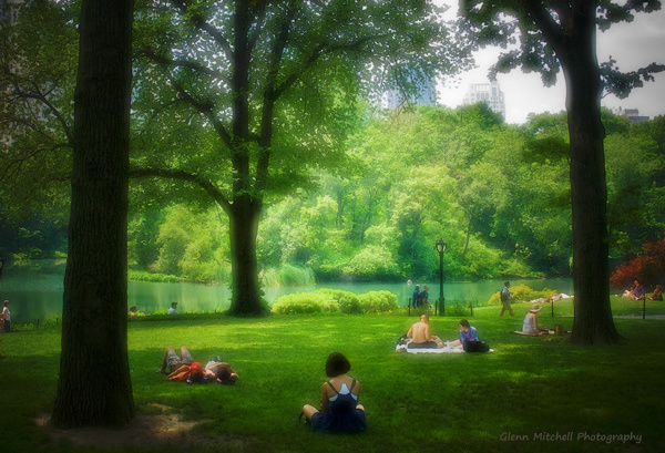 Lazing in Central Park