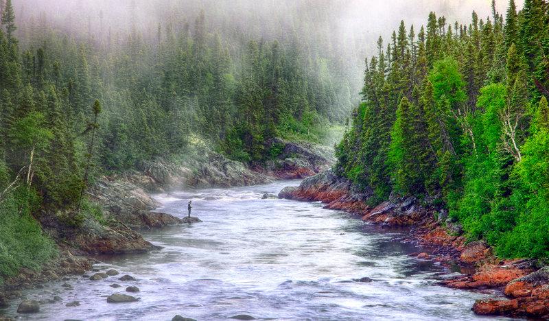 Salmon Fishing on Main River