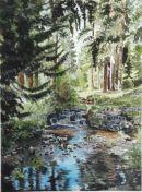 Cragside Forest & river