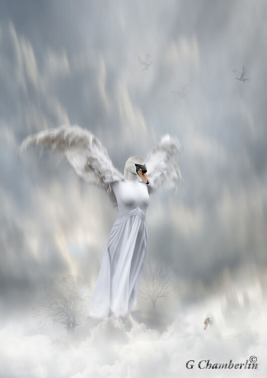 Flying Swan Lady