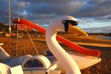Caleta de Fuste Big Swan