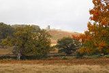 Autumn Old John