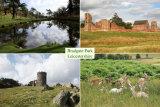 Bradgate Park - Postcard