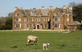 Launde Abbey Sheep - Magnet