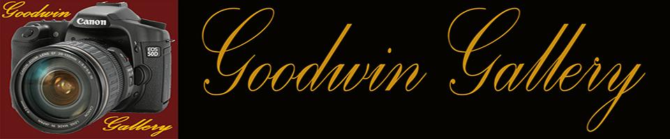 Goodwin Gallery