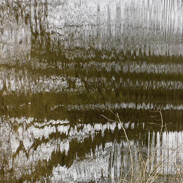 Brown Pond