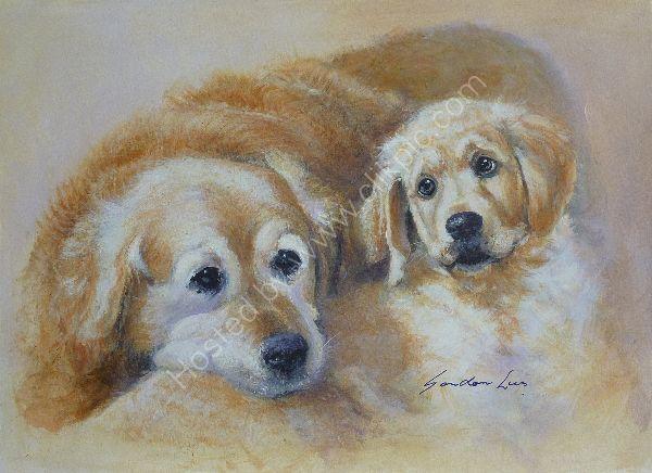 Kestrel & Rowan