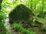 Forgotten dwelling in fairy tale valley