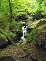Waterfall in hidden fairy tale valley