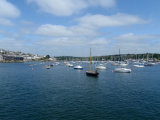 Falmouth harbour's moored boats