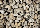 Bone Idle