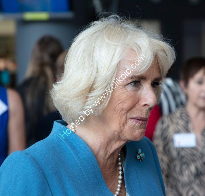 Camilla, Duchess of Cornwall 2