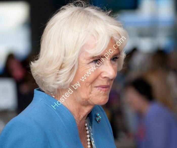 Camilla, Duchess of Cornwall 4