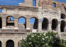Colosseum Calm