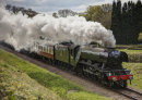 The Flying Scotsman in Sussex