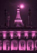 Full Moon Palace