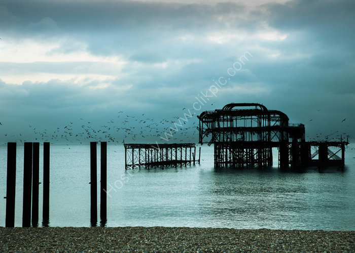 Home to Roost on a Moody West Pier