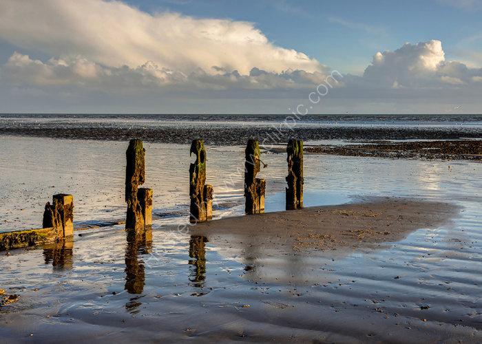 Low Tide Sculptures