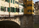 Life on the Arno (6)