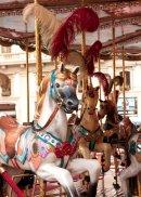 Florentine Carousel (6)