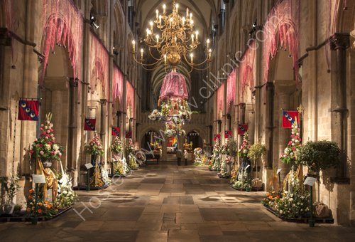 Chichester Flower Festival Launch 2016