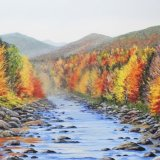 Swift River & Fall Foliage New Hampshire