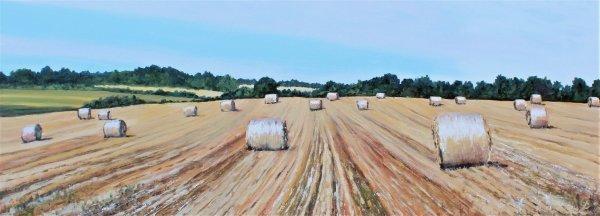 Worcestershire Hay Bales