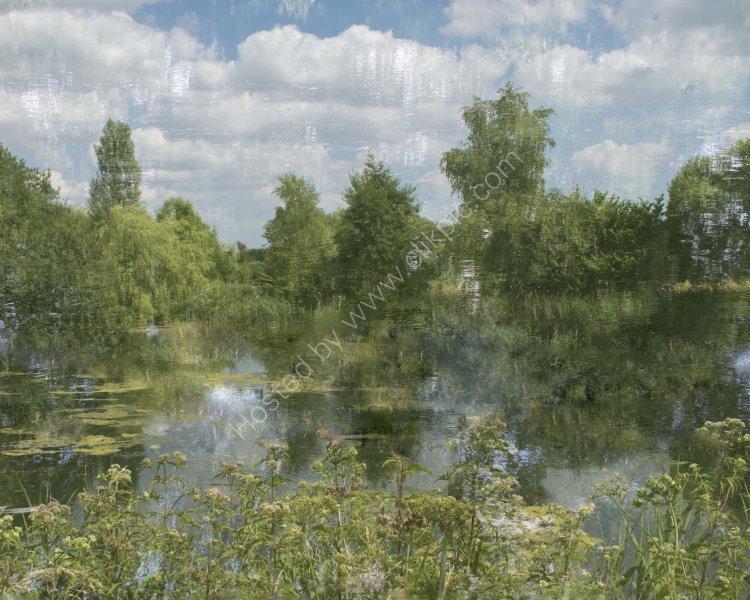 Pallington Lakes