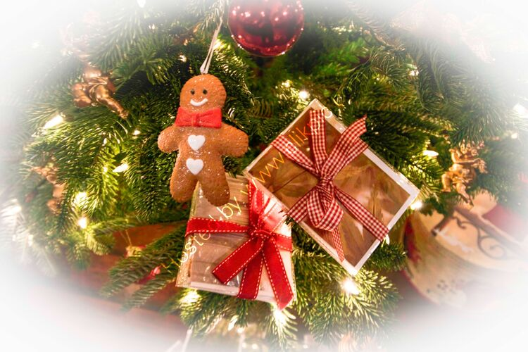 5 card pack Christmas offer