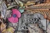1st Remembrance - Fallen John Evans-Jones