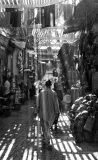 Medina Light Anne Chapman