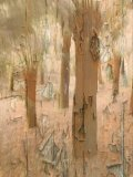 Silver - Decaying Woodland Sue Hambly
