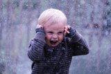Silver - Laughter in the rain Johnny Bullingham