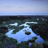 Rockpool, St Margaret's Bay
