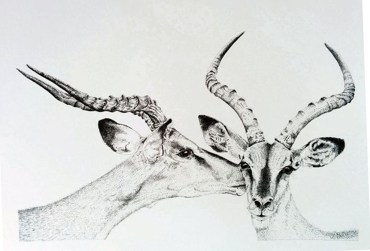 Ant and Dec stipple black and white ink impala