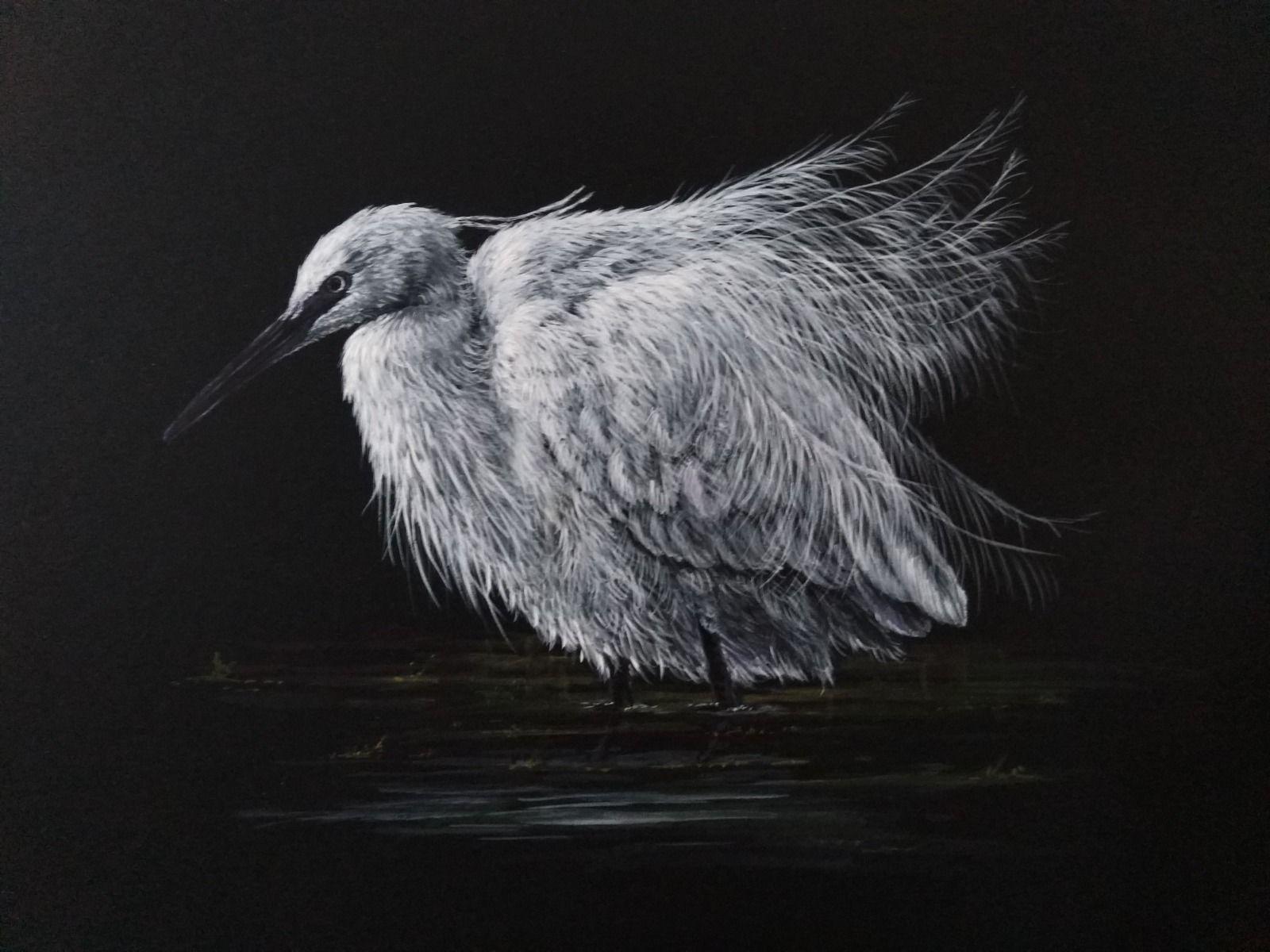 Little Egret Watercolour gouache water bird