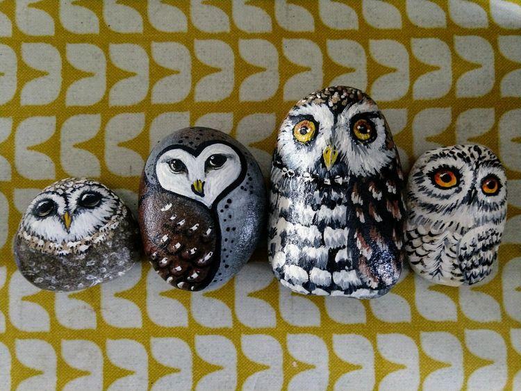 Owl Pebbles
