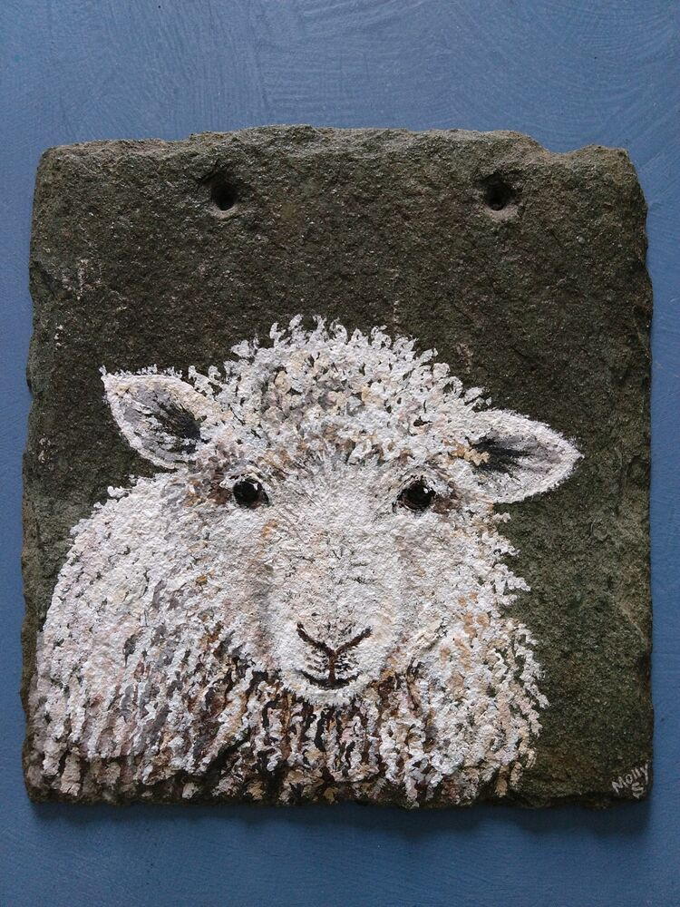 Fiona the sheep