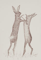 boxing hares (nfs)