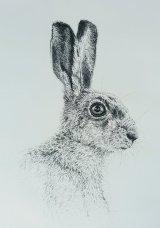 A Hare - Harey Mary!