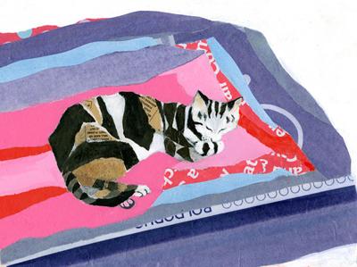 Cat with Quilt